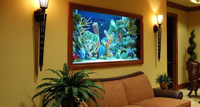 Aquarium Fish Room Check Out These Rooms