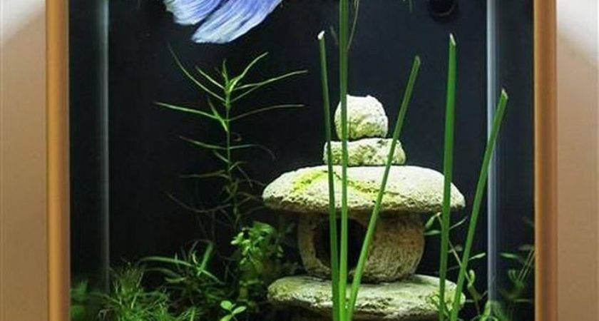 Best Aquarium Design Ideas Pinterest