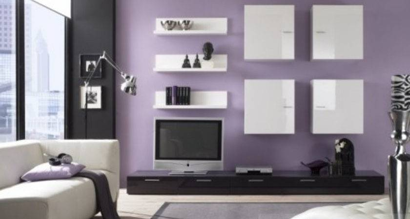 Best Color Combination Living Room Home Combo