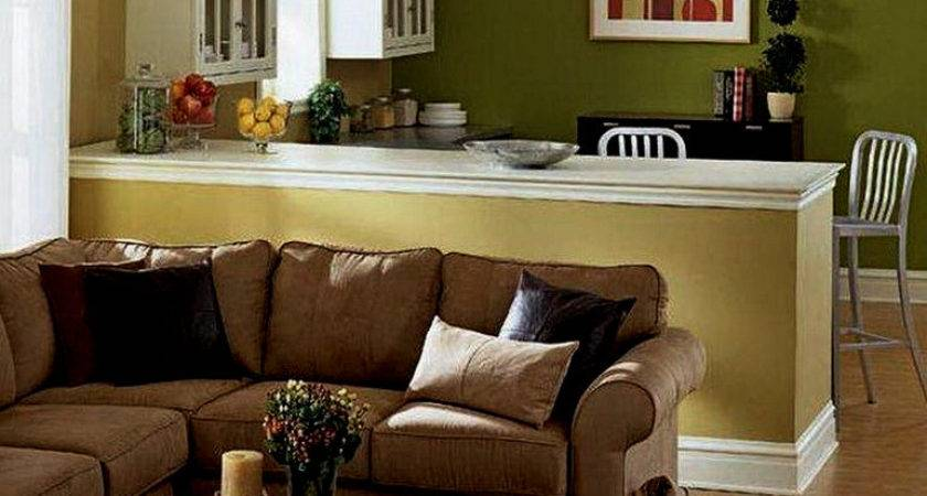 Best Color Paint Living Room Brown Sofa