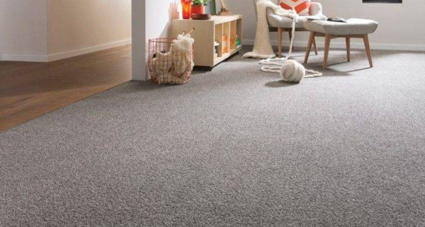 Best Grey Carpet Ideas Pinterest Colors