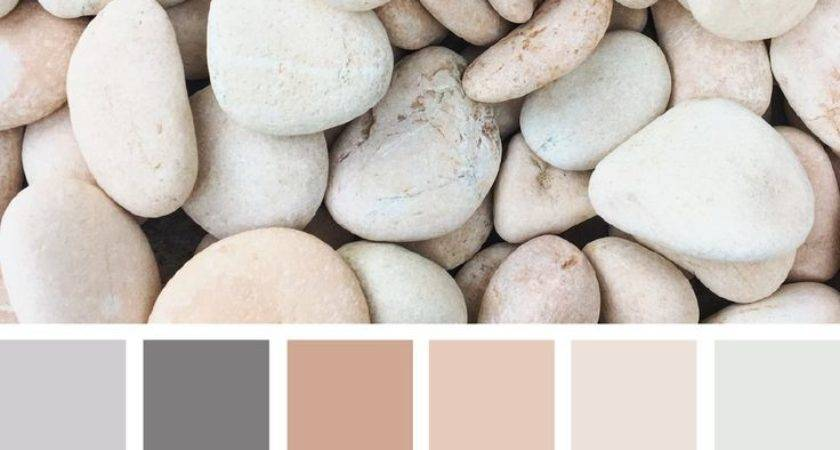 Best Neutral Colors Ideas Pinterest Paint