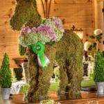 Best Topiary Wedding Ideas Pinterest Candy Table