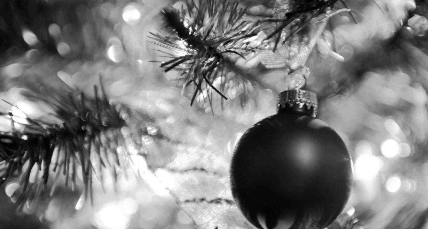 Black White Christmas Tree Photography Temasistemi