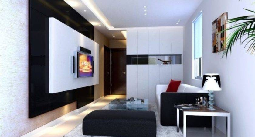 Black White Wall Small Living Room Interior