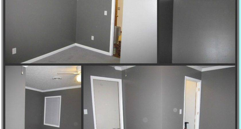 Color Furniture Goes Well Gray Walls