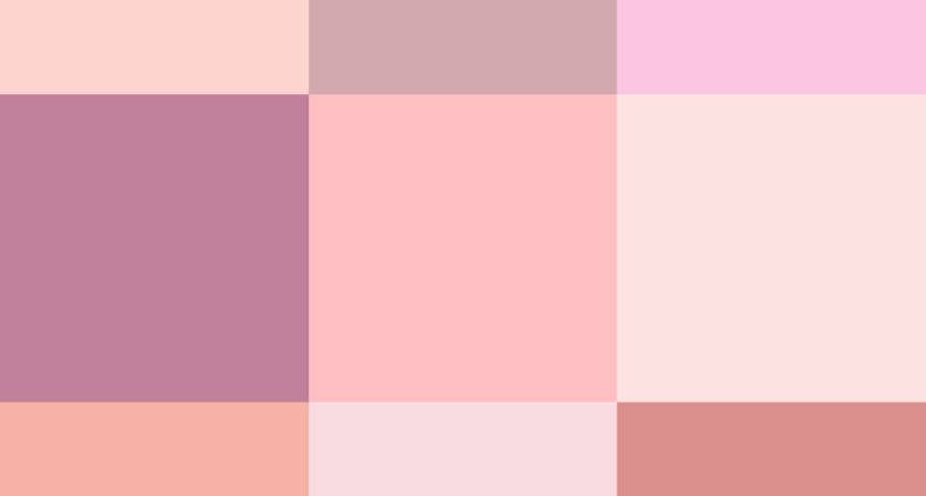 Color Icon Pink Svg Wikimedia Commons