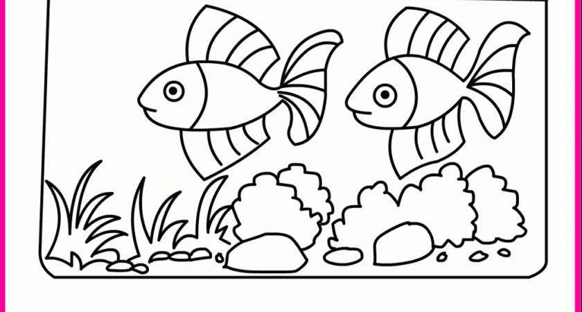 Coloring Pages Fishes Aquarium