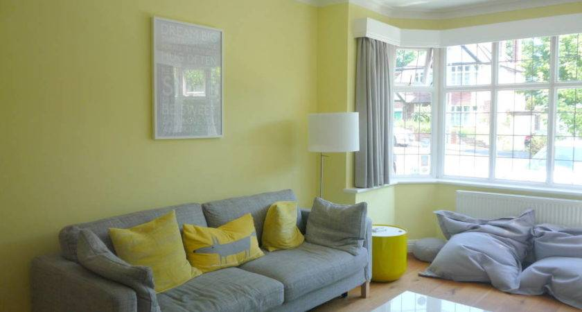 Coolest Feature Wall Colours Living Room Your