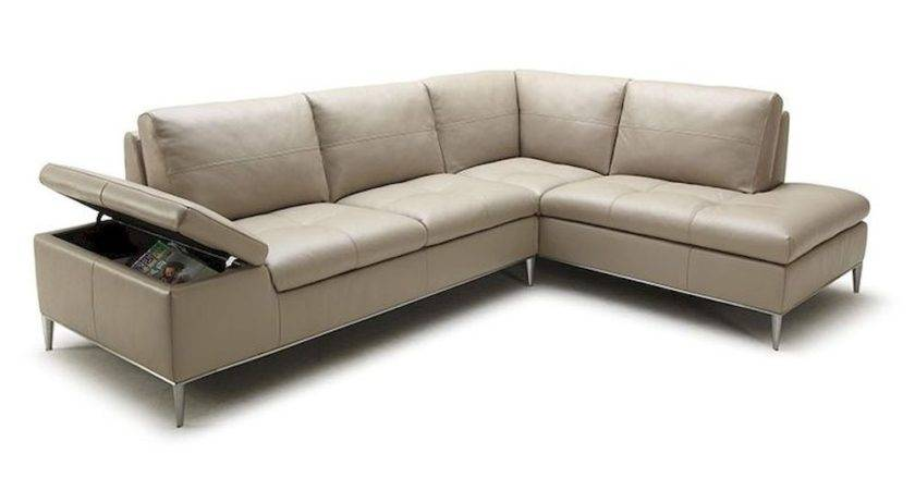 Cozy Modern Sectional Sofas Chaise Additional