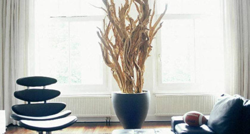 Creative Driftwood Decoration Ideas Your Home