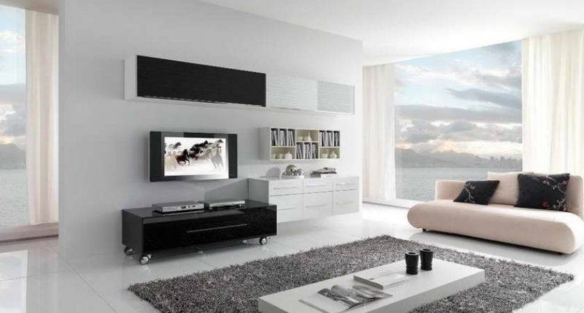 Decoration Contemporary Living Room Decor Ideas