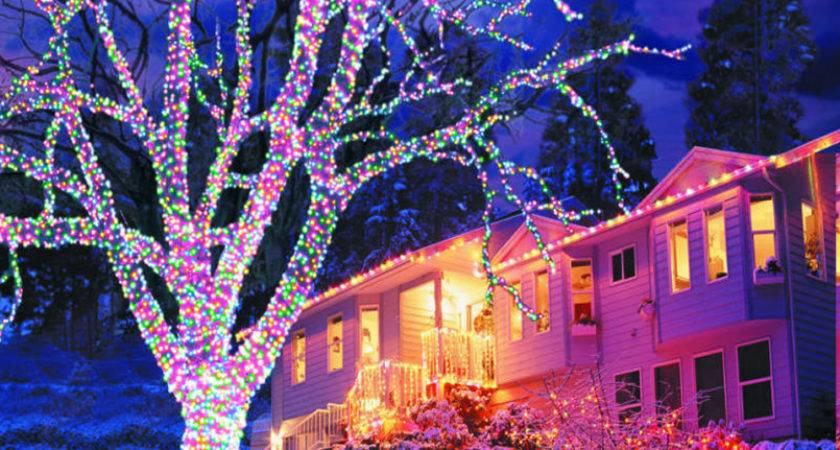 Diy Front Yard Landscaping Lighted Christmas Decorations