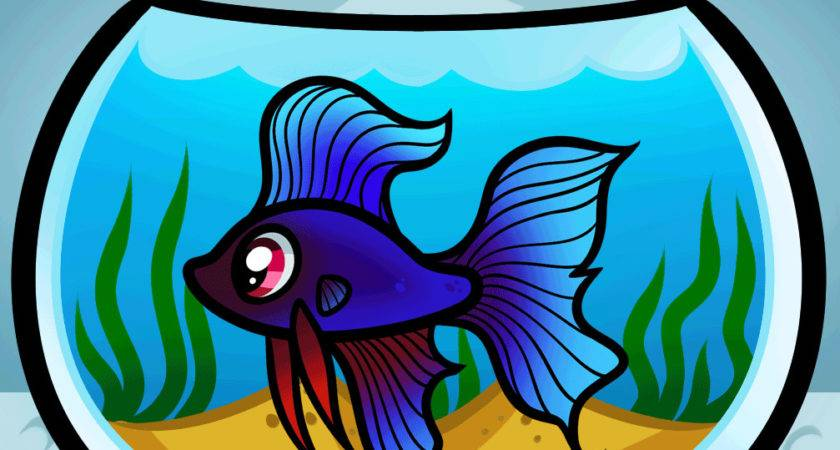 Draw Fish Tank Step Animals