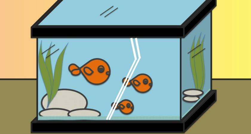 Draw Fish Tank Steps