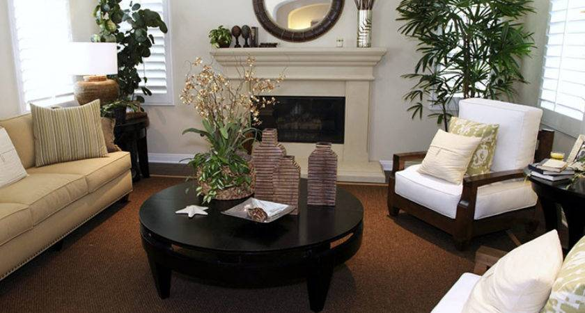 Earth Colors Living Rooms Modern House Tone