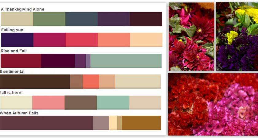 Fall Colors Palettes Pennock Floral