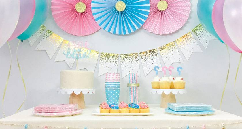 Gender Reveal Baby Shower Decorations Boy Girl Twins