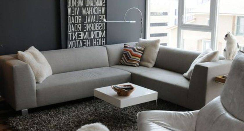 Gray Couch Decorating Ideas Room Decor Living