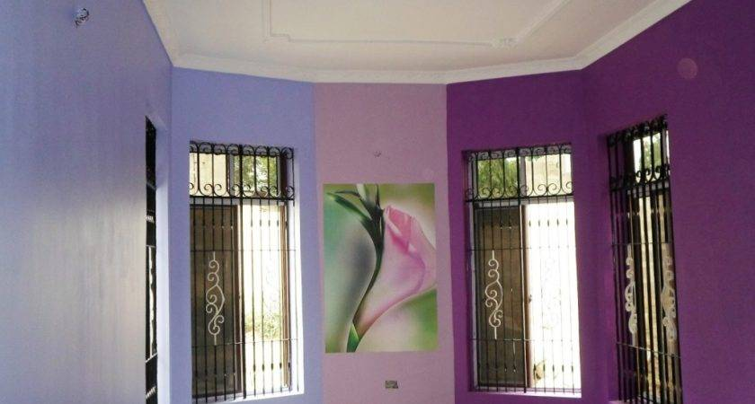 Interior Color Shed Hall Wall Painting Colour