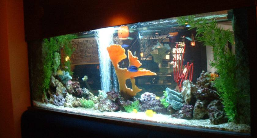 Living Color Aquarium Residential Aquariums