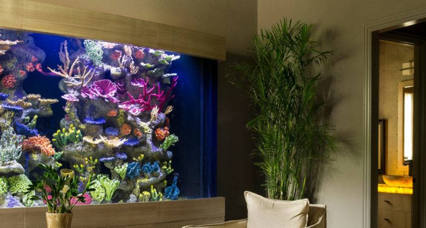 Living Color Aquariums Lauderdale