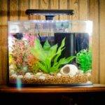 Make Fish Tank Decorations Home Aquarium