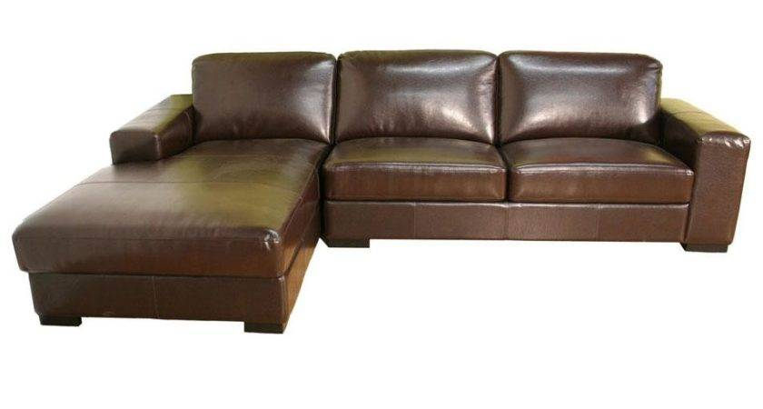 Modern Bycast Leather Sectional Sofa Ideas