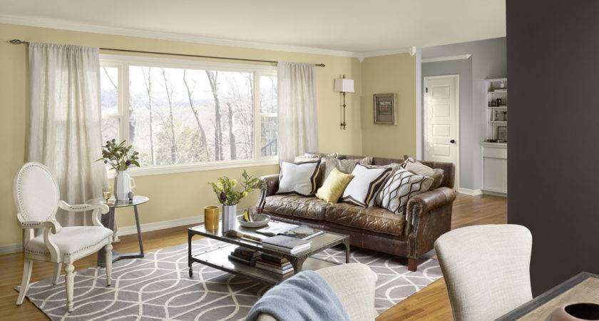 Mustard Gray Living Room Color Schemes Home Combo