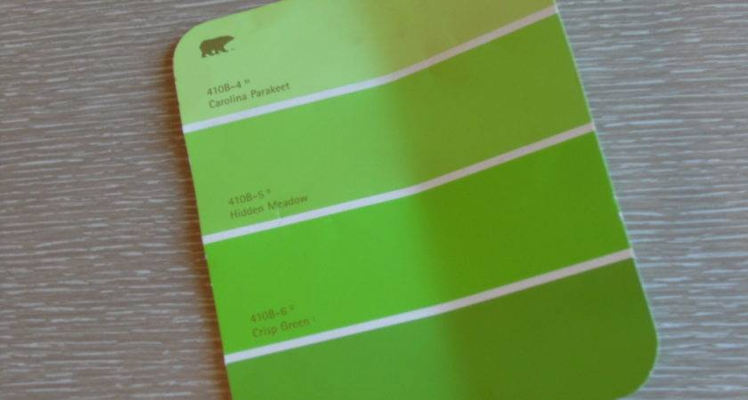 Neon Green Wall Paint Apple Pear Color Dma Homes