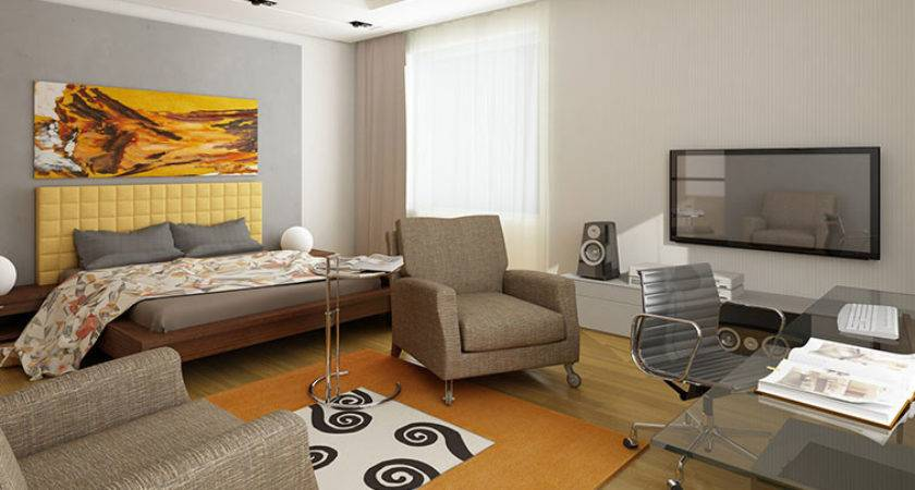 One Room Apartment Design Decoration