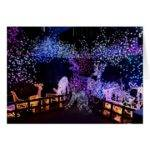 Pink Purple Christmas Decorations Outdoors Card Zazzle