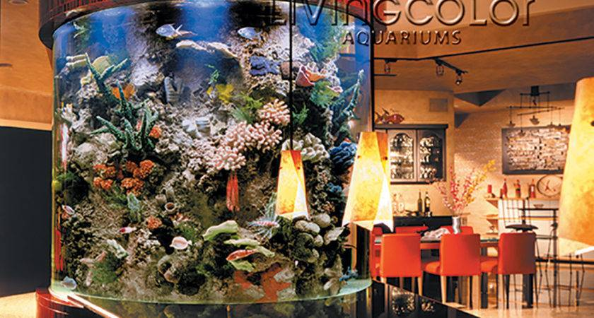 Residential Aquariums Living Color
