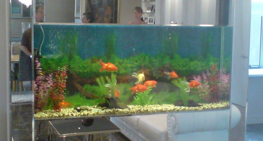 Small Custom Fish Tanks