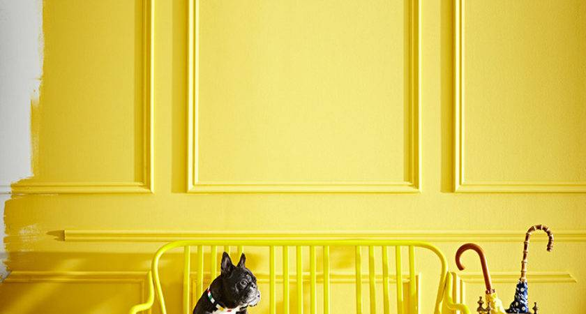 Smitten These Bright Cheerful Spaces Daily Dream