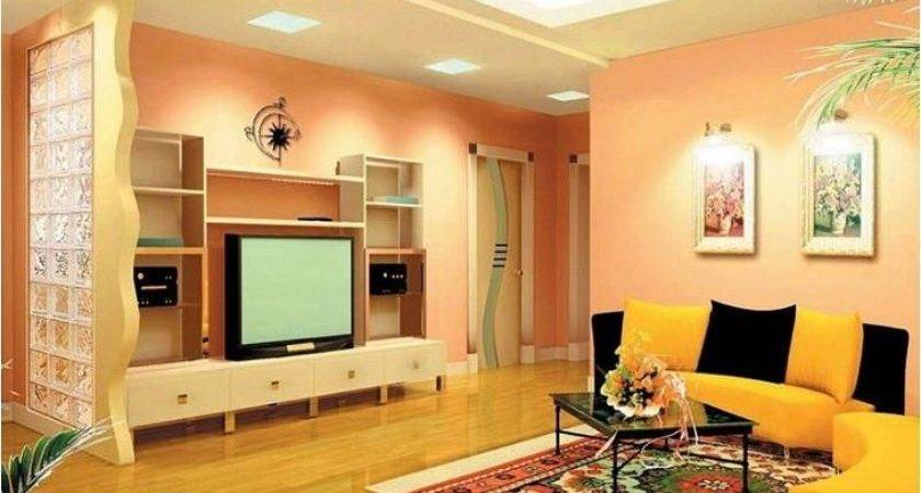 Tips Living Room Color Combinations Walls
