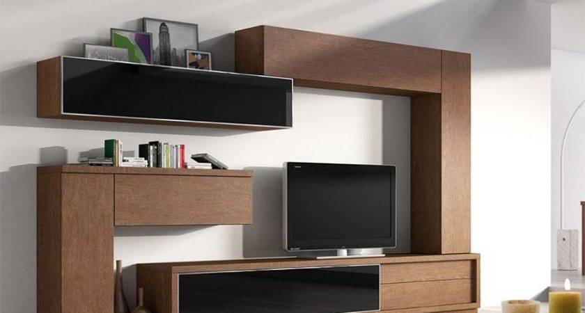 Top Living Room Storage Systems Modern