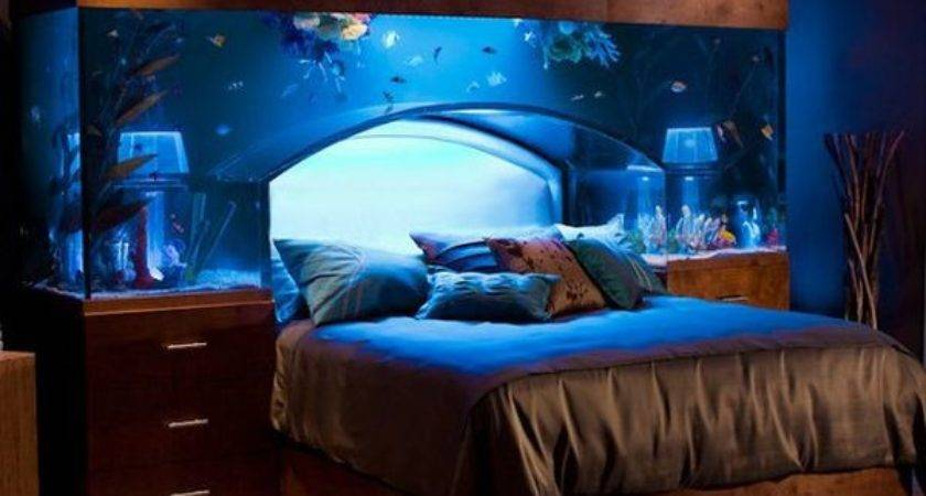 Unexpected Aquarium Design Ideas