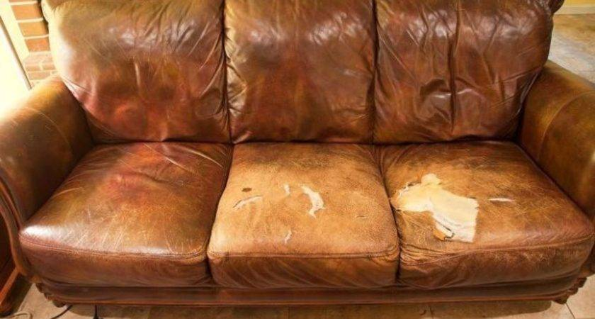 Ways Make Your Beat Couch Look Brand New Hometalk