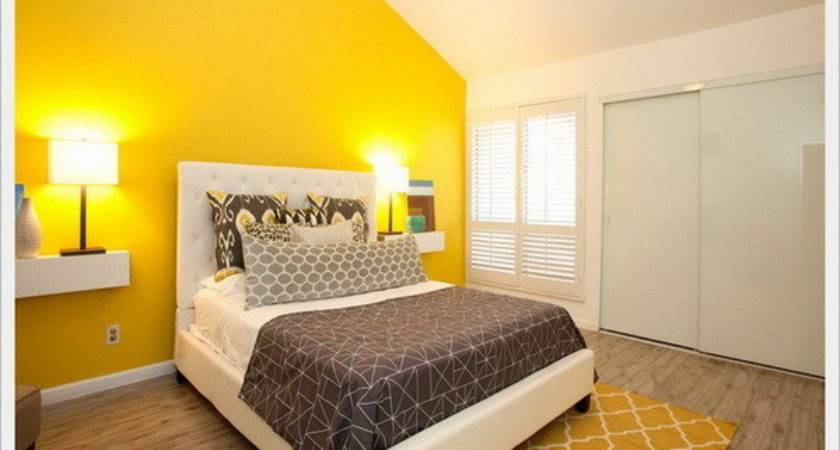 Yellow Color Combination Bright Accent