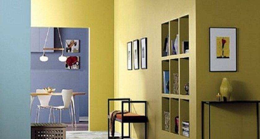 Yellow Interior Paint Ideas Concept Homes