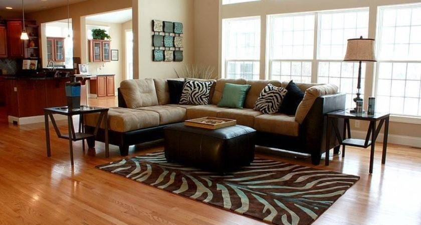 Zebra Print Living Room Decorating Ideas Decor References